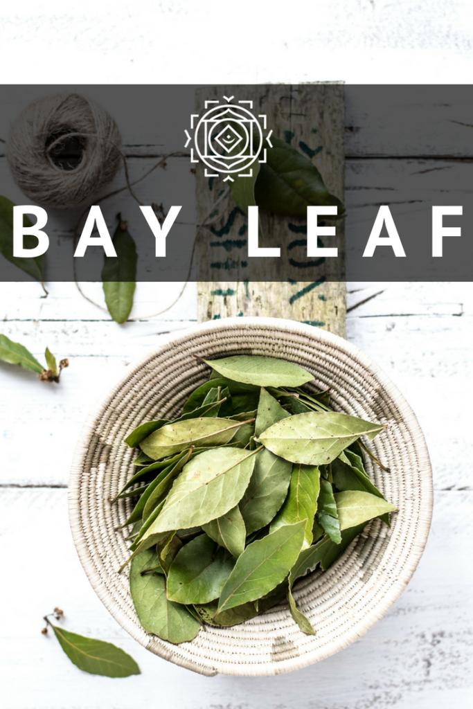 Mandala Organic Bay Leaf - Spicepedia