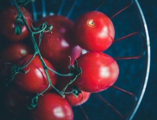 Safran Syltede Tomater