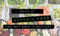 Mandala Organic - What is Organic Food
