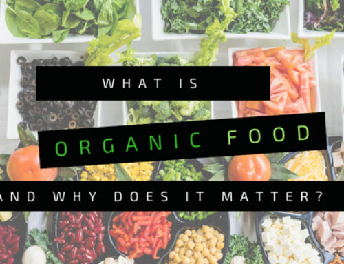 What is Organic Food, and Why Does it Matter?
